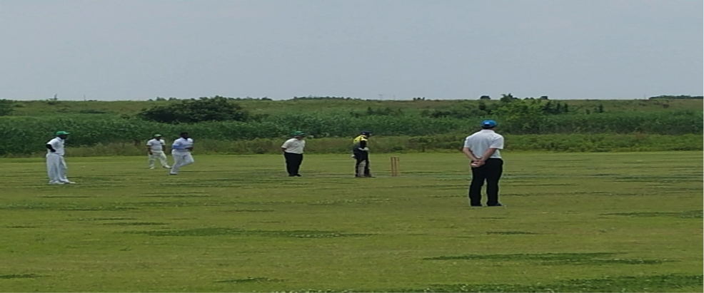squashing the opposition with bat and ball chiba sharks cricket club